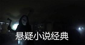 豆瓣评分最高10部侦探推理悬疑小说排行榜txt下载